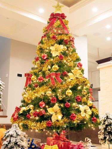 圣诞节套餐圣诞树1.5米/1.8/2.1/2.4/3米加密场景家用